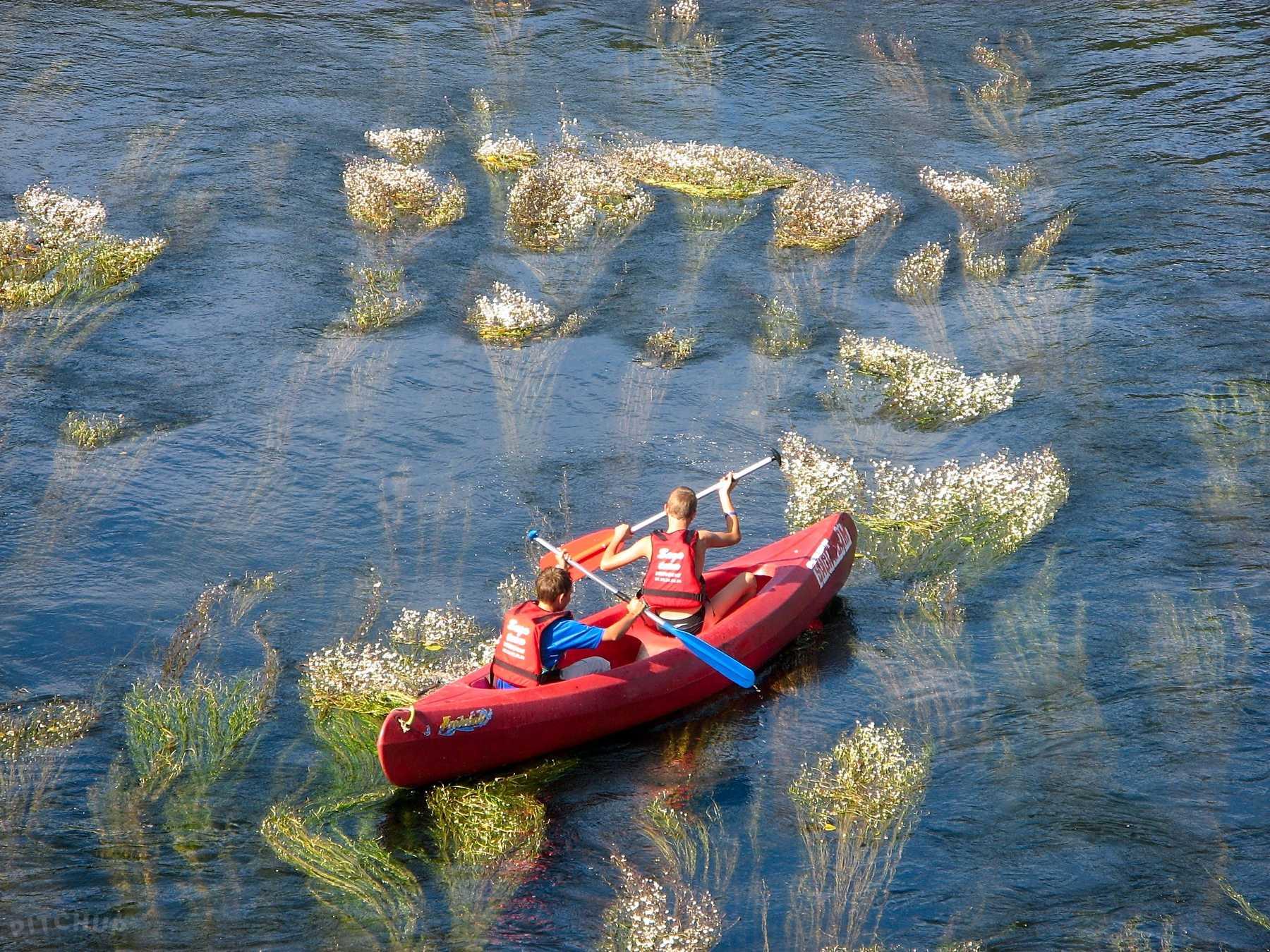 Camping bord de rivière – L'eau Vive